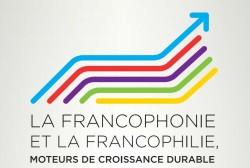 Selon Jacques Attali, la Francophonie pourrait constituer un ensemble stratégique d'une importance capitale pour la France dans les années à venir.