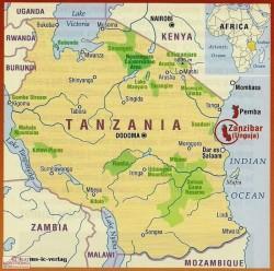 Zanzibar est dès les premiers siècles de notre ère un carrefour commercial majeur dans l'Océan Indien où vont se croiser civilisations bantoue, arabe, persane, indienne et chinoise.