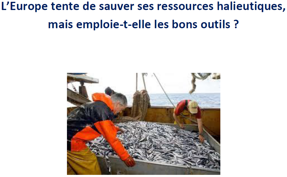 EU pêche