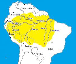 La bassin amazonien recouvre environ 40% du continent sud-américain et se partage entre 8 Etats : Brésil, Colombie, Pérou, Equateur, Bolivie, Venezuela, Guyane, Surinam.