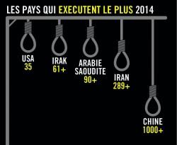 Les pays qui pratiquent le plus la peine capitale dans le monde en 2014.