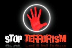 Comment la France pourrait-elle lutter plus efficacement contre les réseaux terroristes ?