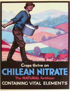 Affiche de publicité pour le nitrate chilien en Grande-Bretagne (memoriachilena.cl)