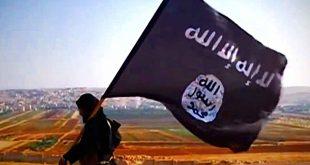 Etat islamique, al-Qaïda, défaite, territoire, concurrence