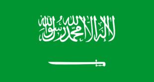 Le drapeau est sur fond vert qui représente la couleur de l'Islam. Il comporte une inscription qui est la chahada (la profession de foi musulmane) et un sabre blanc faisant écho à la conquête du pays par Ibn Saoud.