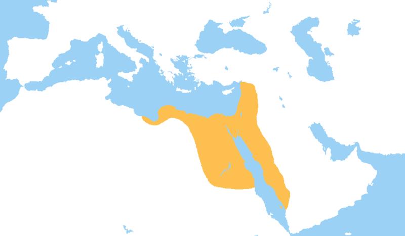 Les Mamelouks, une origine ancienne qui remonte aux califes abbassides.