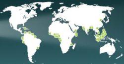 Une carte représentant l'ensemble des actes de piraterie maritime en 2018