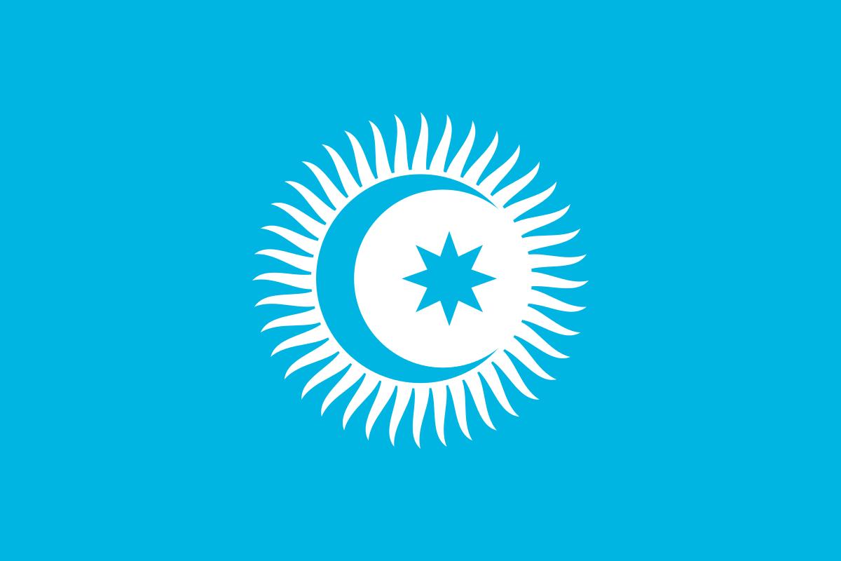 Le drapeau du conseil turcique, organisation de coopération des pays de langue turque.