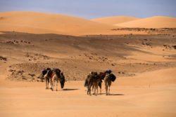 Une vue du désert mauritanien