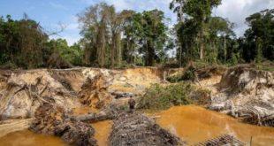 Les militaires de l'opération Harpie luttent contre l'orpaillage illégal en Guyane.