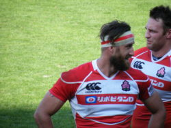 Les Brave Blossoms : l'équipe du Japon de rugby à XV