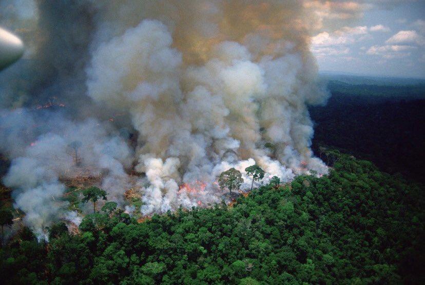 Jair Bolsonaro portera t-il un coup fatal à 30 ans de politiques de lutte contre la déforestation. coup fatal à 30 ans de politiques