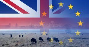 Le Brexit aura des impacts sur l'agriculture et l'alimentation britanniques