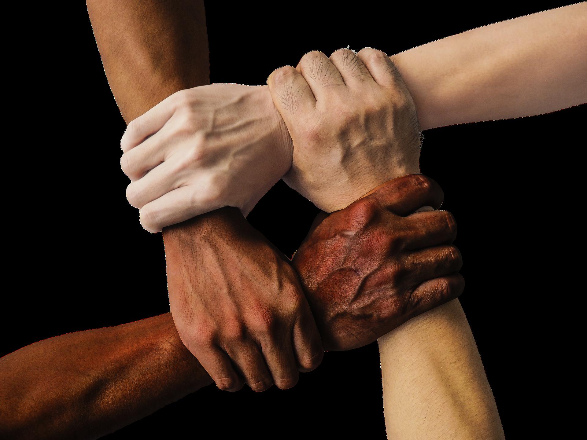 Le Capital social correspond au niveau de confiance et de coopération des individus au sein d'un groupe donné.