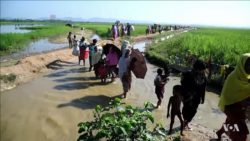 réfugiés rohingyas crise bangladesh birmanie